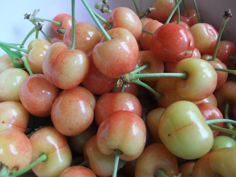 Cherries!  Oh Yum!